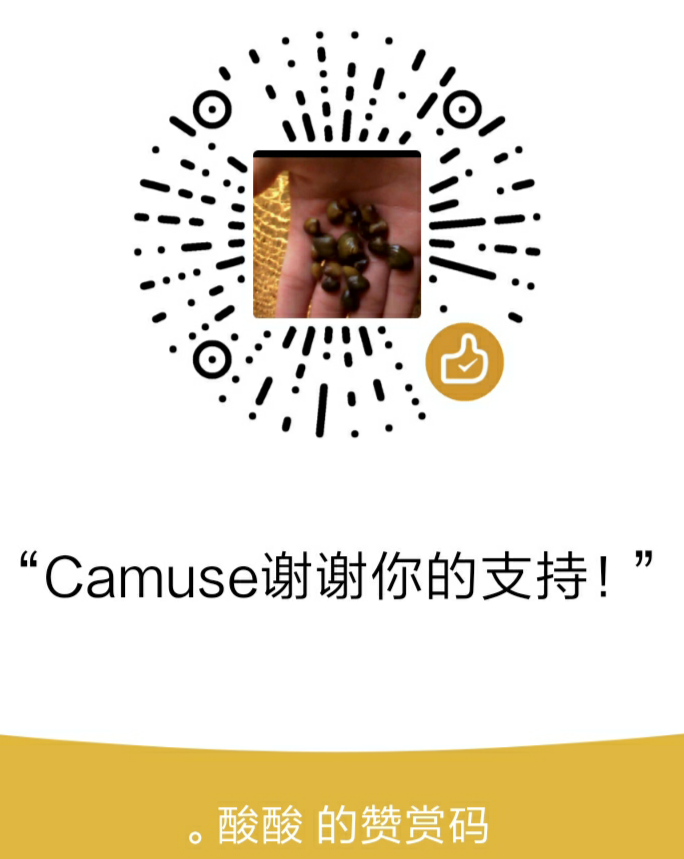 CamuseCao WeChat Pay